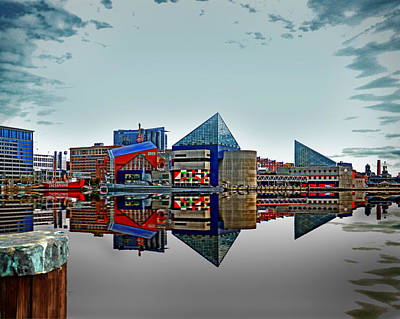 Photograph - Something Fishy At The Baltimore Aquarium by Bill Swartwout Fine Art Photography