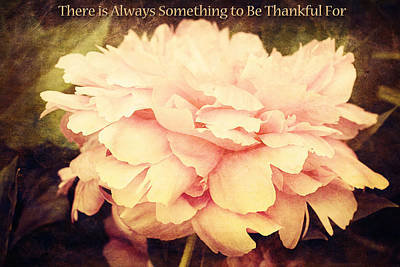 Photograph - Something To Be Thankful For by Trina  Ansel