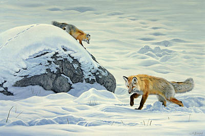 Fox Painting - Something Under The Snow by Paul Krapf