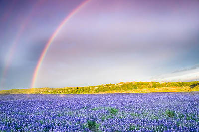 Rainbow Photograph - Somewhere Over The Rainbow - Wildflower Field In Texas by Ellie Teramoto