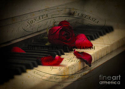 Sonata In Roses Art Print