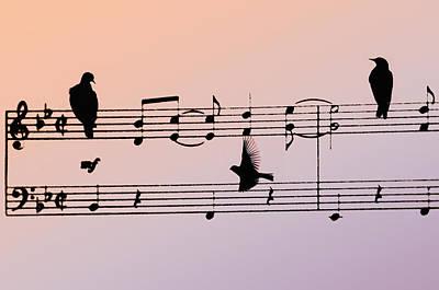 Crow. Bird Music Photograph - Songbirds by Bill Cannon