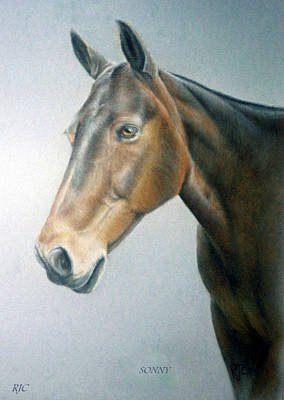 Art Print featuring the painting Sonny by Rosemary Colyer