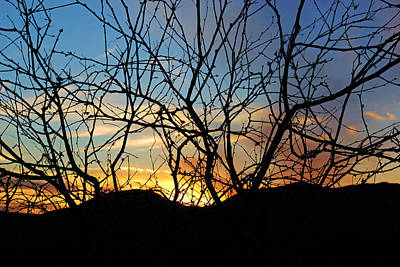 Photograph - Sonoita Sunset by Daniel Woodrum