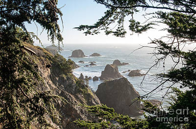 Sonoma Coast 2.2795 Art Print by Stephen Parker