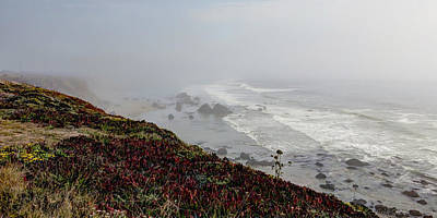 Photograph - Sonoma Coast by Heidi Smith