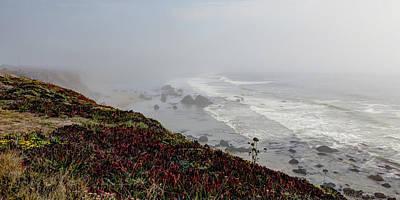 Photograph - Sonoma Coast by Heidi Smith
