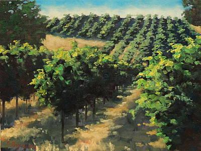 California Vineyard Painting - Sonoma County Vineyards by Steven Guy Bilodeau