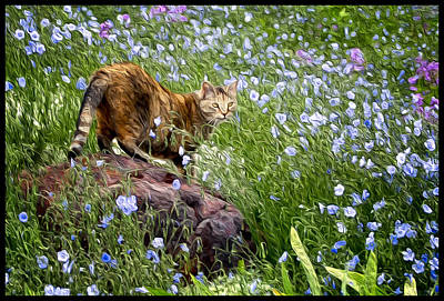 Adele Digital Art - Sonoma In The Wildflowers by Adele Buttolph