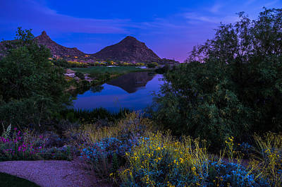 Desert Sunset Photograph - Sonoran Desert At Dusk by Scott McGuire