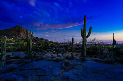 Desert Sunset Photograph - Sonoran Desert Saguaro Cactus by Scott McGuire