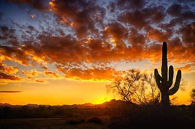 Photograph - Sonoran Style Sunrise  by Saija  Lehtonen