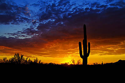 Photograph - Sonoran Style Sunset  by Saija  Lehtonen