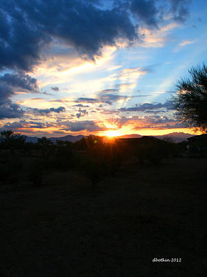 Photograph - Sonoran Sunrise by Dick Botkin