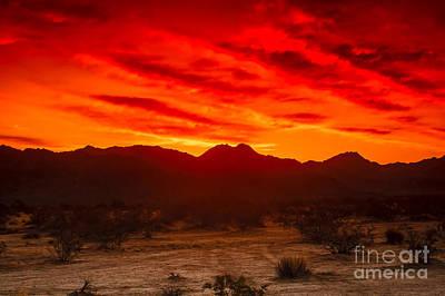Photograph - Sonoran Sunrise by Robert Bales