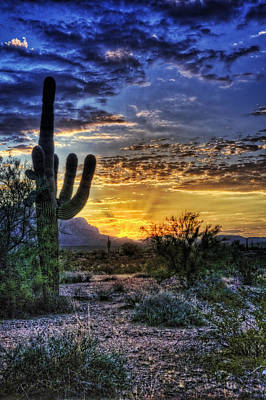 Saguaro Cactus Photograph - Sonoran Sunrise  by Saija  Lehtonen