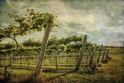 Soon There Will Be Wine Print by Jeff Swanson