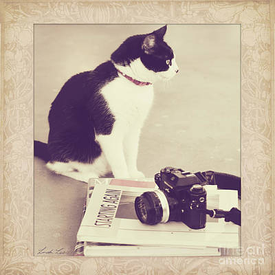 Photograph - Sophie And The Camera by Linda Lees