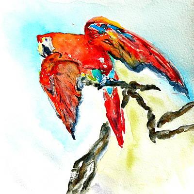 Scarlet Macaw Painting - Sophie by Beverley Harper Tinsley