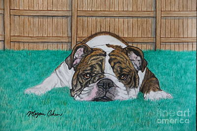 Wall Art - Painting - Sophie The Bulldog by Megan Cohen
