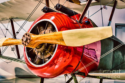 Camels Photograph - Sopwith Camel by Inge Johnsson