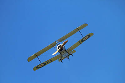 Camel Photograph - Sopwith Camel - Wwi Fighter Plane by David Wall
