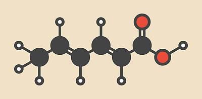 Sorbic Acid Food Preservative Molecule Art Print by Molekuul