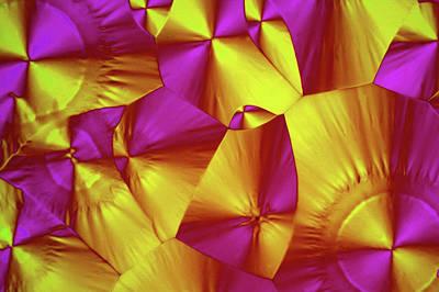 Crystalline Photograph - Sorbitol Crystals by John Durham