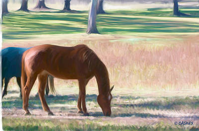 Caskey Wall Art - Painting - Sorrel Grazing by Bethany Caskey