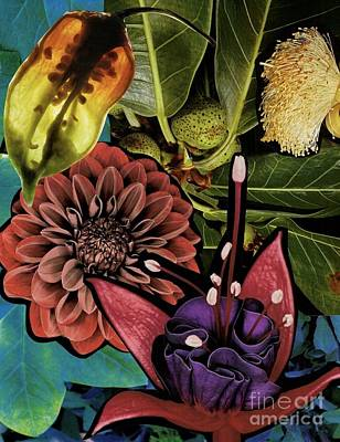 Sorrellism Collage 1 Art Print by Susan Sorrell