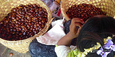 Photograph - Sorting Water Chestnuts Zay Cho Street Market 29th Street Mandalay Burma by Ralph A  Ledergerber-Photography