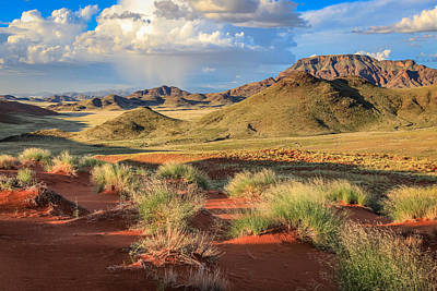 Photograph - Sossulvei Namibia Afternoon by Gregory Daley  PPSA