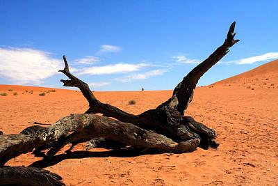 Photograph - Sossusvlei Namibia by Aidan Moran