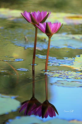 Lotus Blossoms Photograph - Soul Mates by Suzanne Gaff