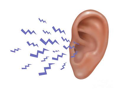 Sound Entering Human Outer Ear Art Print