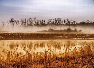 Pure Gold Photograph - Sounds Of Silence by Tom Druin