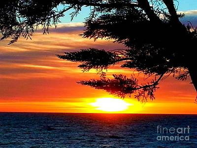 Photograph - South Bay Sunset by Steed Edwards