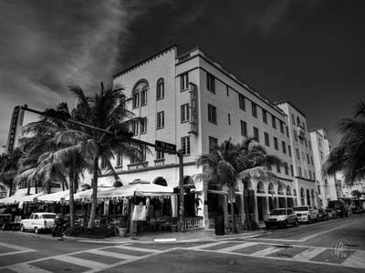 Tree Photograph - South Beach - Edison Hotel 002 by Lance Vaughn