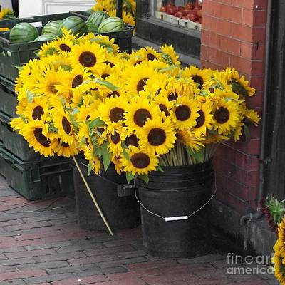 Photograph - South Boston's Farmer's Market by Michelle Welles
