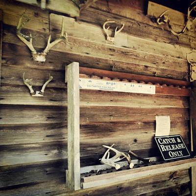 Photograph - South Carolina Hunting Cabin by E Karl Braun