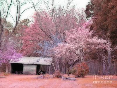South Carolina Pink Fall Trees Nature Landscape Art Print by Kathy Fornal