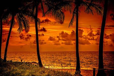 Photograph - South Florida by Louis Ferreira