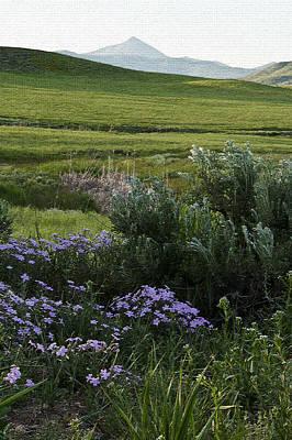 South Fork Of Salt Creek Original