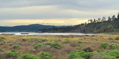 Photograph - South Humboldt Bay by Jon Exley