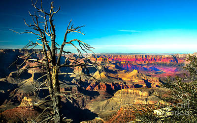 Photograph - South Rim With A Red Glow by Robert Bales