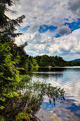 Photograph - South Shore Of Bubb Lake by David Patterson