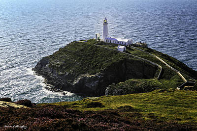 Photograph - South Stack Lighthouse by Fran Gallogly