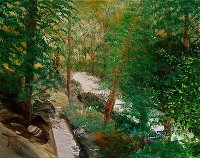 Fort Collins Painting - South Trail Cache La Poudre by Troy Thomas
