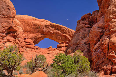 Photograph - South Window by Greg Norrell