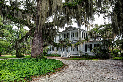 Photograph - Southern Charm by Walt  Baker